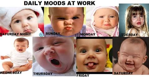 Daily Job Moods at Work baby funny