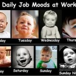 Daily Job Moods at Work Funny Images