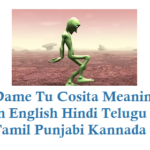 Dame tu cosita Meaning in English Hindi Telugu Tamil Punjabi Kannada