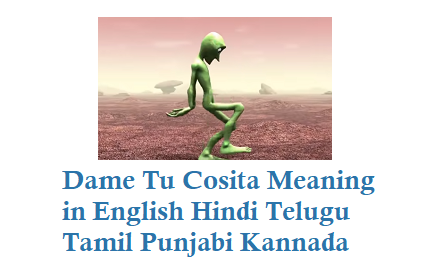 Dame tu cosita Meaning in Hindi English Telugu Tamil Punjabi Kannada