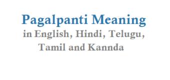 Pagalpanti Meaning in English Hindi Telugu Tamil and Other Pagalpanti Movie Details
