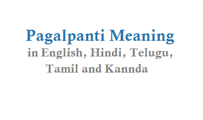 Pagalpanti Meaning in English Hindi Telugu Tamil and Other