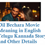 Dil Bechara Meaning in English Telugu Kannada Story and Other Details